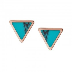 Pendientes Fossil Mujer Fashion JF02638791